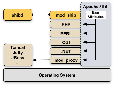 SP Components and Environment